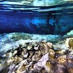 Cenote Photo