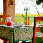 Breakfast set amidst mustard fields