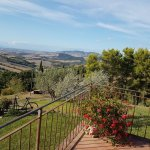 Zdjęcie Podere Bellaria