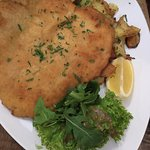 Snitzel, Pasta and Chicken
