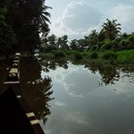 Village tour by canoe - from Palmgrove Lake Resort