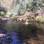 local swimming river