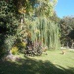 Parco di Villa Adele (4)