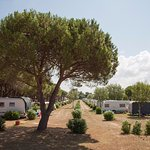 Foto de Camping Village Baia Blu La Tortuga