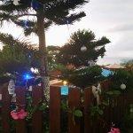 Photo of Leu Bleu Austral