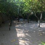 Foto de Parador de Chinchón