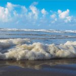 Filthy sea foam on the beach