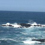 Talaso Atlantico Foto