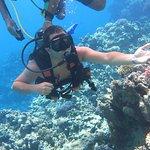 Ocean College Dive Centre Foto