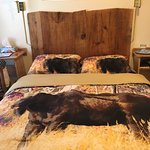 Pretty much the limit to the rooms width. That's a moose on the bedspread.