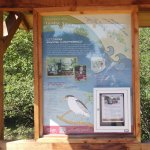 Interpretive sign at Swanson Natural Area
