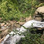 Zdjęcie Brandywine Falls