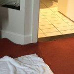 Wet carpet, so wet even towels couldn't sop up the water. carpet pulling away from floor. Bathro