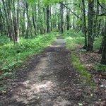 Farley trail