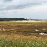 Looking across the estuary and marsh to the beach from the Laird-Norton Trail.