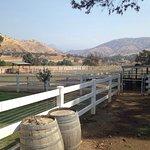 Lazy J Ranch-Americas Best Value Inn resmi