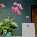 Photo de Dr. Wilkinson's Hot Springs Resort