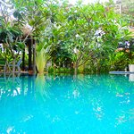 Swimming Pool , garden, sitting area, relax and peaceful, green and green