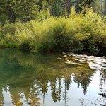 صورة فوتوغرافية لـ Moose Creek Ranch