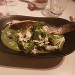 lavrak fish