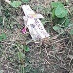 Rubbish around lodge