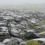 Photo of The Burren National Park