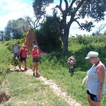 Journee en brousse avec nos amis du royal baobab somone