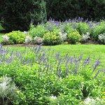 gardens at Morven Park