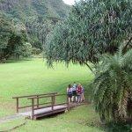 Photo of Lyon Arboretum