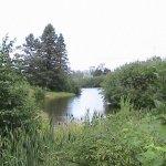 Lac au bord du chalet