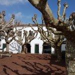 Foto de Convento de Sao Francisco