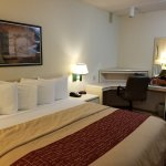 Red Roof Inn Jacksonville - Southpoint Foto