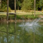 Photo of Camping Naturiste Le Couderc