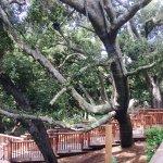 Photo de Calamigos Guest Ranch and Beach Club