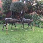 Photo of Gran Hotel Elba Estepona & Thalasso Spa