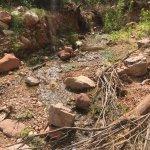Little stream at Indian Garden