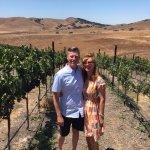 Vineyards at Pence