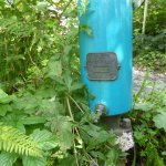 Hydraulic Ram Pump - pumps water using the flow of a stream - no additional energy needed!