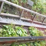 Cliff railway rails awesome ferns grow underneath it
