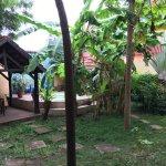 Jardin avec au fond, le jacuzzi