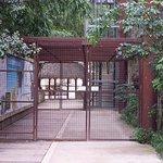 SAS avant de pénétrer dans le sanctuaire des Okapis, des singes et des oiseaux en totale liberté