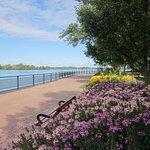 Gorgeous waterfront