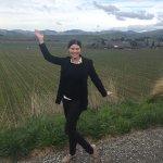 Brancott vineyard