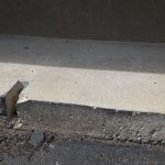 Jagged high curb that caused the blowout of my tire when parking outside our room (#229).