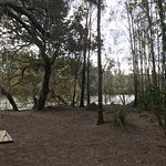 Paperbark Camp Foto