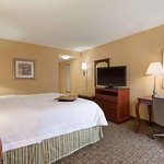 Deluxe Guest Room with a King Bed