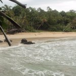 Playa de Red Frog