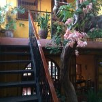 Photo of Guesthouse El Nancite