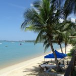 Photo of Samui Palm Beach Resort & Hotel