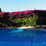 Photo of Hotel Albergaria Dias
